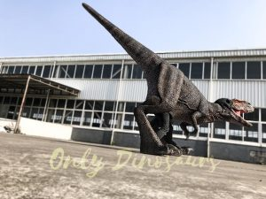 Adult T-Rex Dinosaur Costume for Sale
