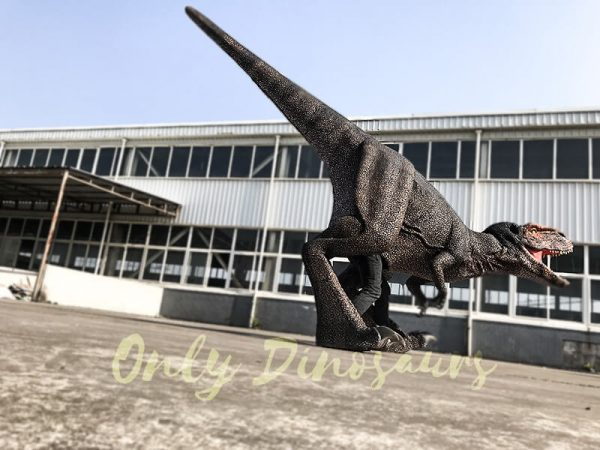 Adult T Rex Dinosaur Costume for Sale4 1