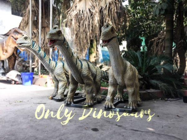 Animatronic Baby Brachiosaurus for Dinosaur Park4 1