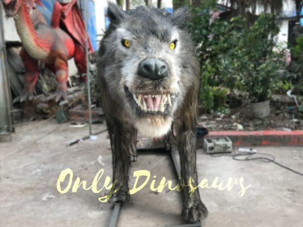 Animatronic-Dire-Wolf-Ice-Age-Animals4