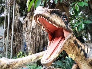 Animatronic Raptor on the Stump for Dinosaur Show