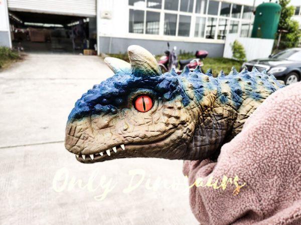 Arm Puppet Baby Dinosaur Cute Carnotaurus3 1