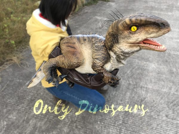 Awesome-Baby-Velociraptor-Puppet-with-Feathers4-2