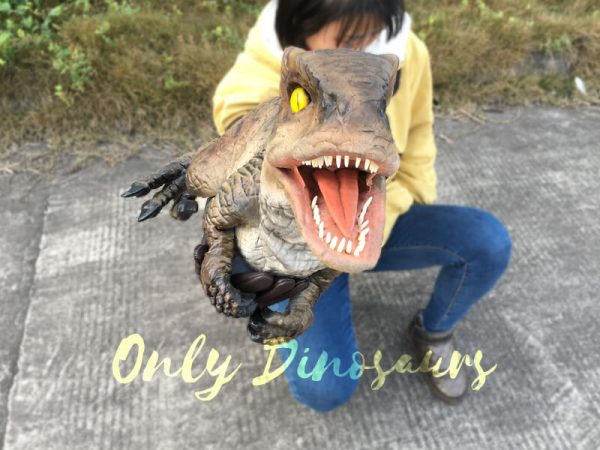Awesome-Baby-Velociraptor-Puppet-with-Feathers6