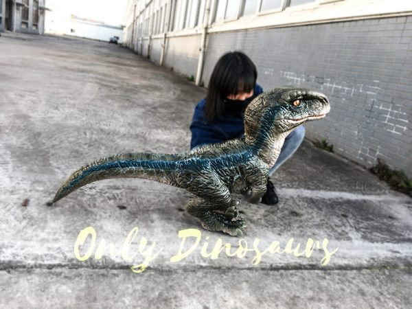 Baby Blue Velociraptor Puppet from Jurassic World1 1