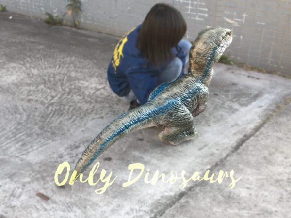 Baby-Blue-Velociraptor-Puppet-from-Jurassic-World2-2