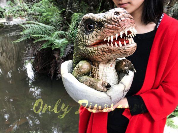 Baby Hatching T-Rex Puppet Kids Gift1