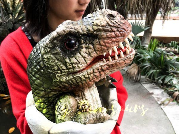 Baby Hatching T Rex Puppet Kids Gift4 1