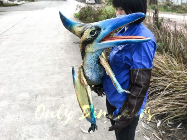 Baby Pterosaur Puppet Standing on Fake Arm4 1