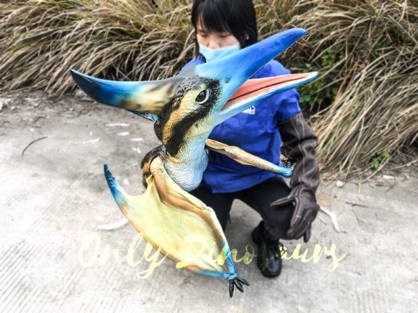 Baby Pterosaur Puppet Standing on Fake Arm6
