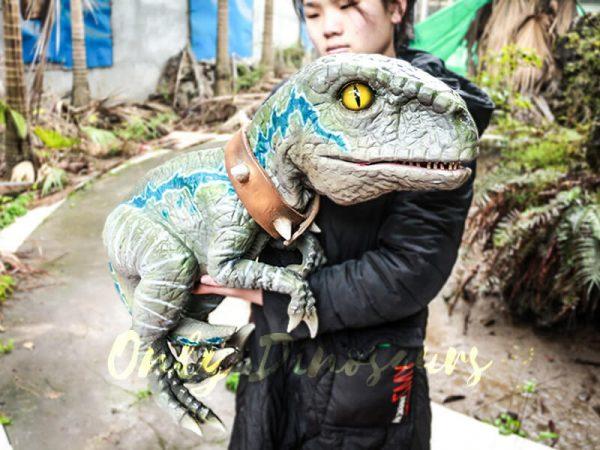 Baby Velociraptor Dinosaur Puppet for Kids2 1
