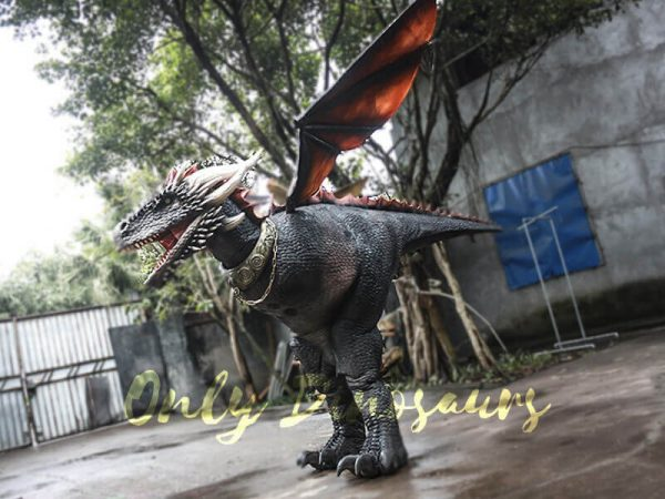 Black Realistic Halloween Dragon Costume8