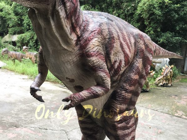 Commercial-Activity-Promotion-Dinosaur-Costume111