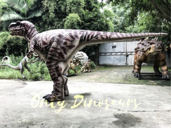 Commercial Activity Promotion Dinosaur Costume2