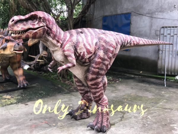 Commercial-Activity-Promotion-Dinosaur-Costume222