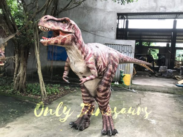 Commercial-Activity-Promotion-Dinosaur-Costume333
