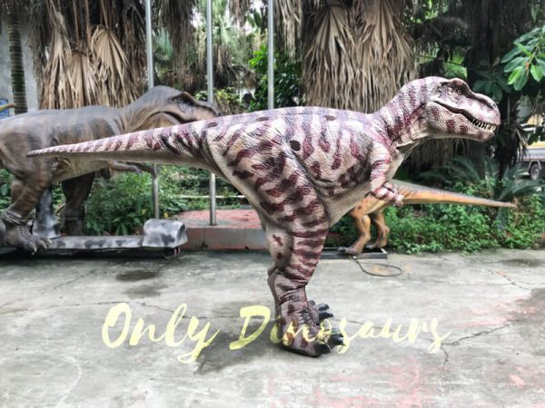 Commercial-Activity-Promotion-Dinosaur-Costume444