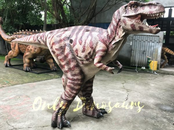 Commercial-Activity-Promotion-Dinosaur-Costume555
