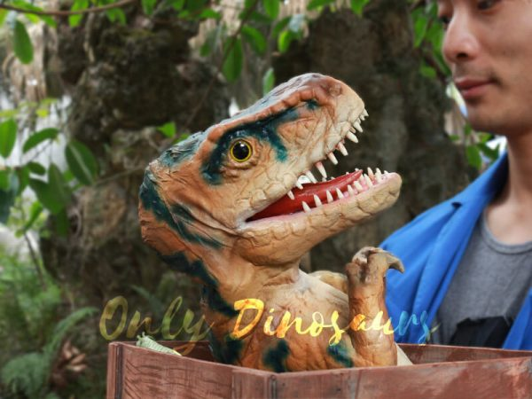 Cute-Crate-Baby-Dinosaur-Hand-Puppet-for-Kids5-1