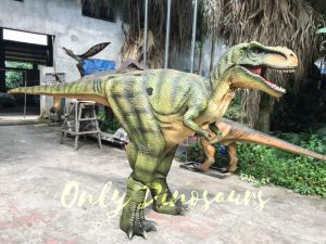 Dino Costume Green Tyrannosaurus Rex for Event