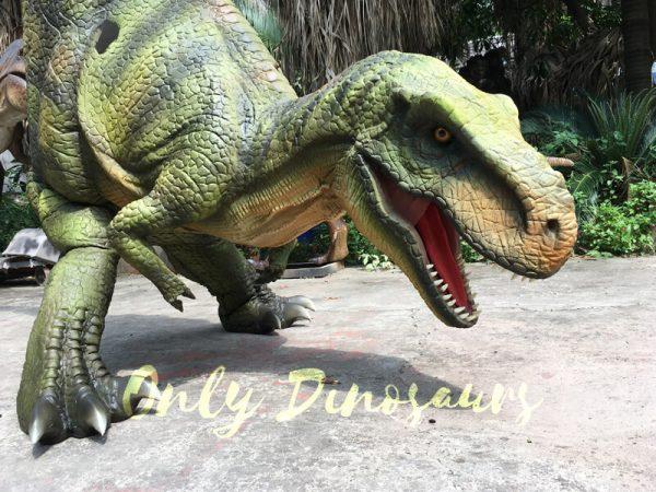 Dino-Costume-Green-Tyrannosaurus-Rex-For-Event222