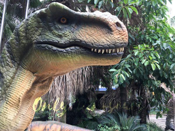 Dino-Costume-Green-Tyrannosaurus-Rex-For-Event333