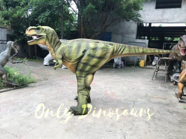 Dino-Costume-Green-Tyrannosaurus-Rex-For-Event444