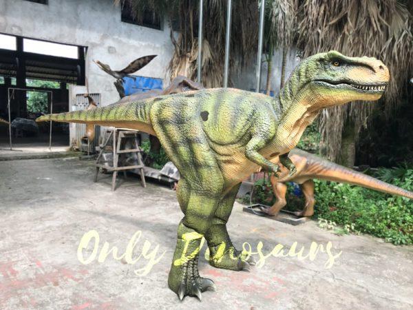 Dino-Costume-Green-Tyrannosaurus-Rex-For-Event555