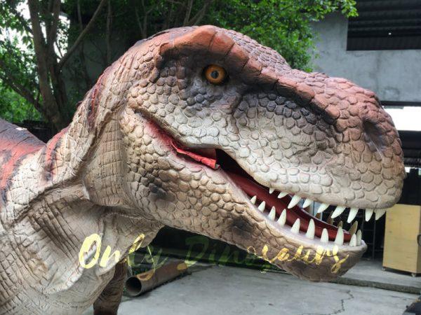 Dinosaur-Costume-Adult-Of-Tyrannosaurus-Rex333