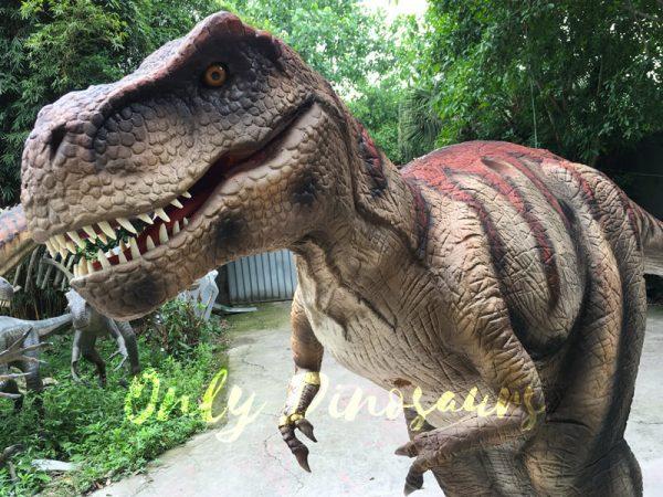 Dinosaur-Costume-Adult-Of-Tyrannosaurus-Rex666
