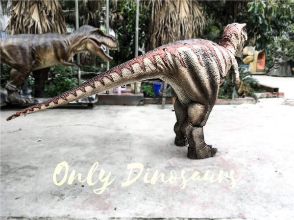 Dinosaur Costume Adult of Tyrannosaurus Rex3 1