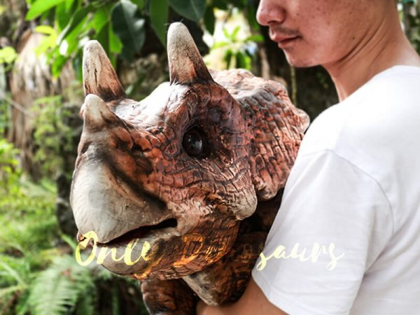 Dinosaur Party Artificial Baby Dinosaur Puppet Triceratops Dark Brown1 1
