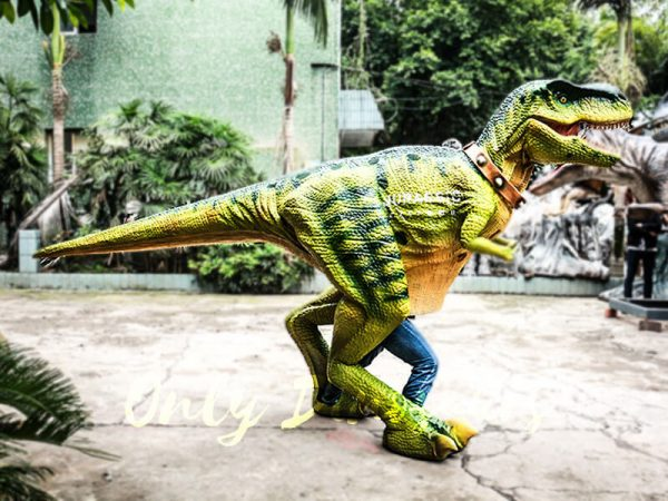 Dinosaur Suits Costume for Shows Tyrannosaurus1 1