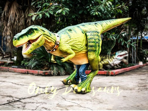 Dinosaur Suits Costume for Shows Tyrannosaurus3 1