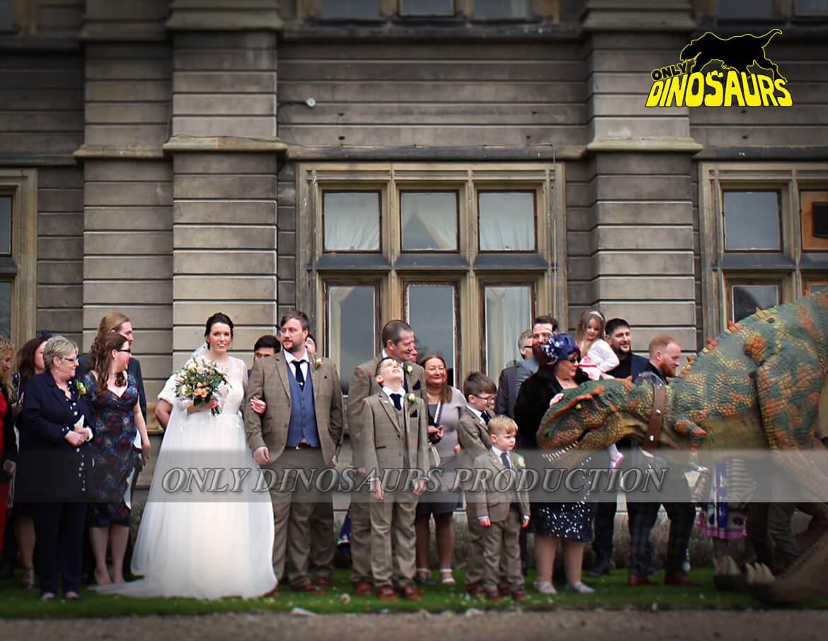 Dinosaur Costume in a Wedding