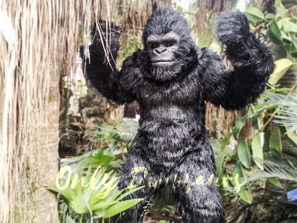 Exhibition-Props-Realistic-Gorilla-Costume6-1