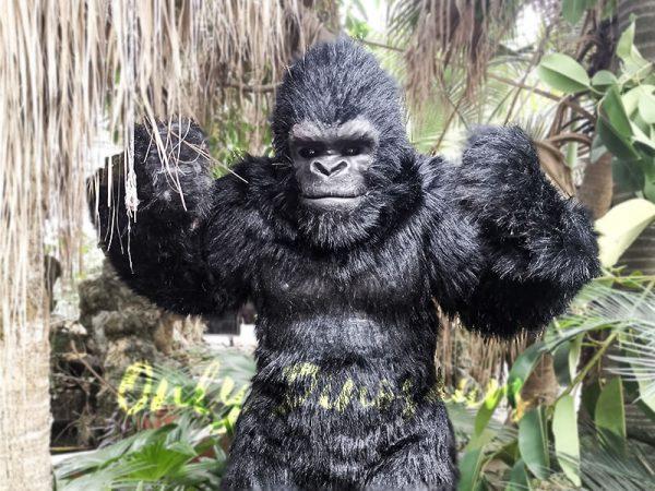 Exhibition Props Realistic Gorilla Costume7