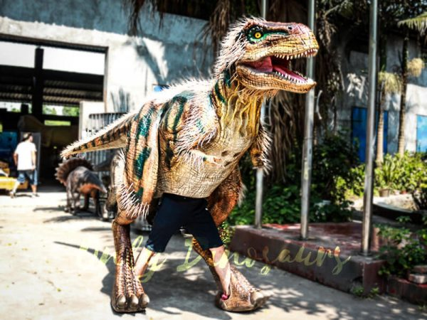 Fairy T rex Costumes for Festival3 1