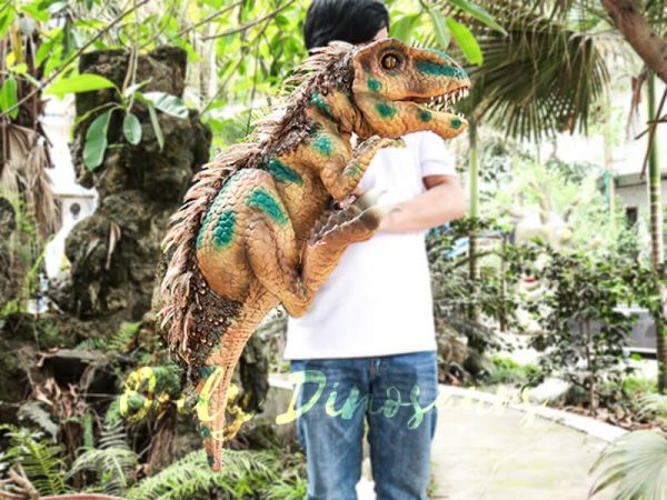 Feathered Baby Tyrannosaurus Rex Puppet for Fun4