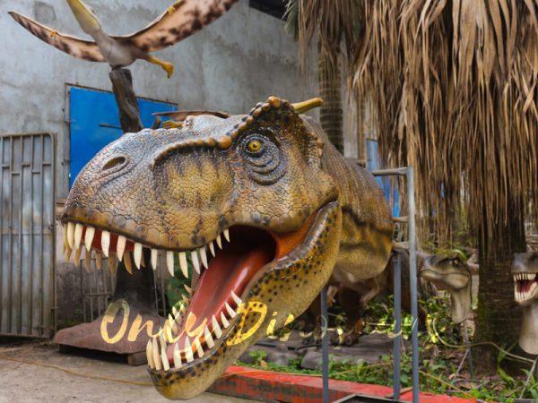 Fiberglass-T-Rex-Head-For-Wall-Decoration-1