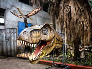 Fiberglass T-Rex Head for Wall Decoration