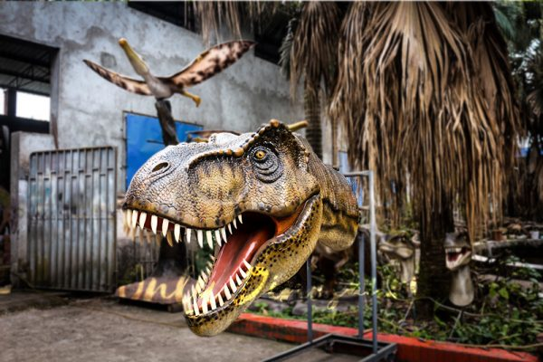Fiberglass T rex Head for Wall Decoration1