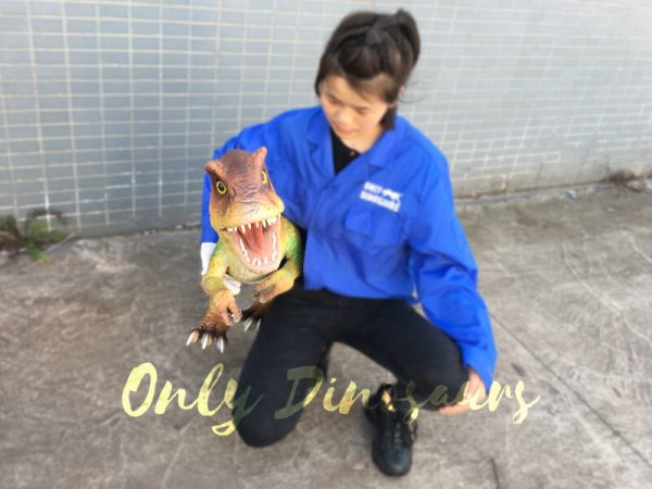 Flexible-False-Arm-Dinosaur-Puppet-T.-rex-for-Stage-Show5-1