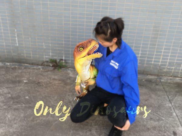Flexible-False-Arm-Dinosaur-Puppet-T.-rex-for-Stage-Show6-1