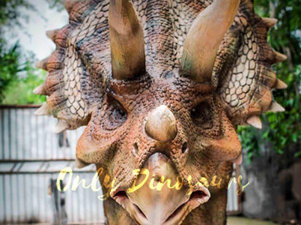 Four-Legged-Dinosaur-Costume-Triceratops-Suit111