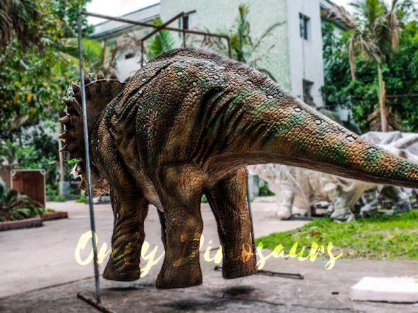 Four Legged Dinosaur Costume Triceratops Suit3