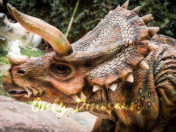 Four Legged Dinosaur Costume Triceratops Suit5