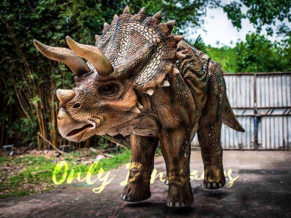 Four Legged Dinosaur Costume Triceratops Suit6