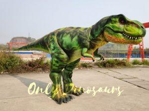 Giant T-Rex Costume 6M Long 3M High