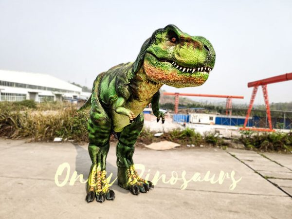 Giant T Rex Costume 6M Long 3M High2 1